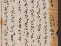 民间抄本残卷——《解毒方钞》