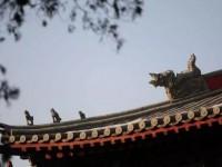 十二星宫图像部分中国原型